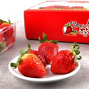 [농할쿠폰20%] [남도장터]열매네 유기농딸기 1kg (500g x 2팩)