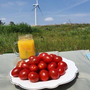 [농할쿠폰20%] [남도장터]푸르름 토경재배 대추토마토 (1~2번과 2kg)