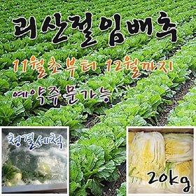 [농할쿠폰20%] 특품 괴산절임배추 20kg 7~9포기 국내산천일염