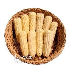 [농할쿠폰20%] 강원도 정선 냉동 찰옥수수 20개 무감미 국산 옥수수