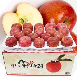 청정 영주소백산사과 가정용 꿀부사 ~10kg