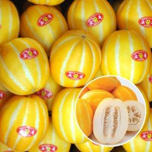 [농할쿠폰20%] 참외의 고장 성주 꿀 참외 가정용 5kg