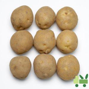[농할쿠폰20%] 감자 20Kg (특)