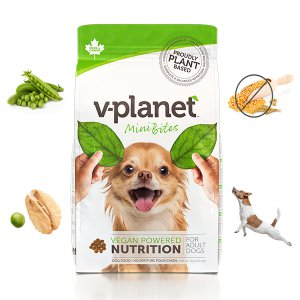 브이플래닛 100% 채식 비건사료 미니bite 2.04kg+필루