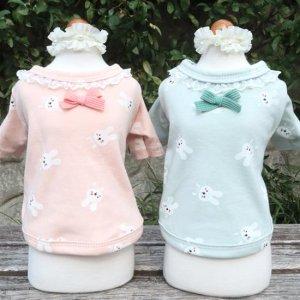 토끼가 귀여운 xs강아지옷 잠옷 봄가을옷 토끼 깡충