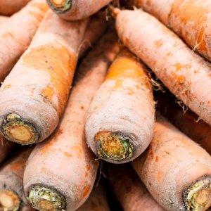 [농할쿠폰20%] 국내산 생식용 흙당근 몬나니 쥬스용 5kg