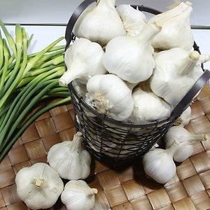 [농할쿠폰20%] 2020년 새남해농협 공동선별 햇마늘 통마늘 실중량