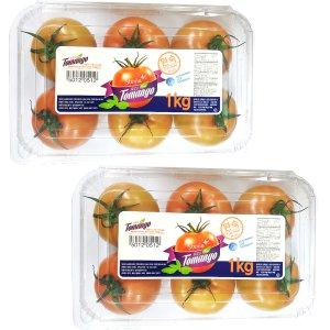 [농할쿠폰20%] 설탕을뿌린맛 스테비아 토마토 토망고1kg+1kg