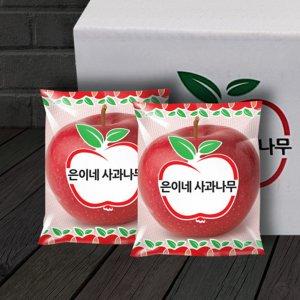 [농할쿠폰20%] 1+1 은이네사과나무 안동 세척사과 6-8kg