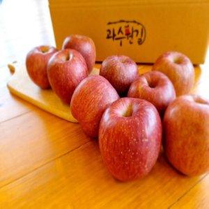 [햇살가득] 경북 가정용 햇 가을사과 3kg(15~17과)