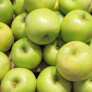 [농할쿠폰20%] 새콤달콤 여름 사과 가정용 아오리사과 4kg 실중량