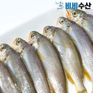 제주 파조기(참조기 파품)1kg