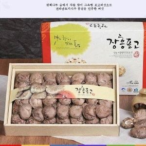 유기농 장흥표고세트동고300g