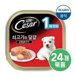 시저 강아지캔 쇠고기,계란과 당근 퍼피 100g x 24개입