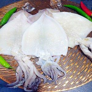 [수산쿠폰40%] [남도장터]녹동수산 손질 오징어 3-4미 (500g-550g)/국내산 오징어 냉동비축품