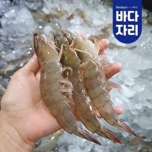 국내산 제철 회로먹는 신안 활새우 1kg (30미 내외)
