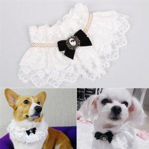 샤랄라 고양이 강아지옷 케이프 턱받이 스카프