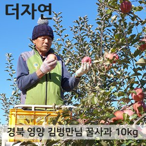경북 영양 꿀 사과 부사 10kg 가정용 특가판매