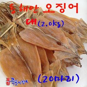 [수산쿠폰20%] 마른오징어 특대 20마리(2.0kg) 동해안 건오징어 포항
