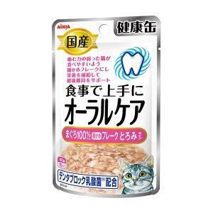 아이시아 건강캔파우치 오랄케어 걸쭉한 참치후레이크 40g