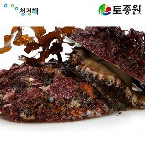[수산쿠폰20%] 토종원 제주 자연산전복 1Kg 청정 제주도