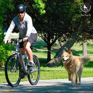 딩동펫 강아지 자전거 산책리드줄 산책로프
