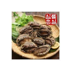 [수산쿠폰20%] [일촌일품] 완도 활 전복 세트 1kg (총 11-12미)