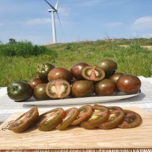 [농할쿠폰20%] [남도장터]푸르름 토경재배 흑토마토 2kg (1-2번과)