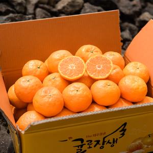 제주농협 GAP 당도선별 귤로장생 카라향 3kg/5kg