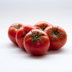 [농할쿠폰20%] 고당도 스테이비아 토마토 토망고 단마토 1kg
