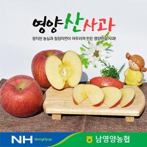 [농할쿠폰20%] 경북 영양농협 사과 꿀부사 5kg 27~30과 미세기스