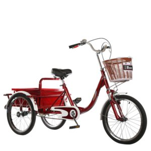 어른세발자전거 성인 세발자전거 2인 자전거