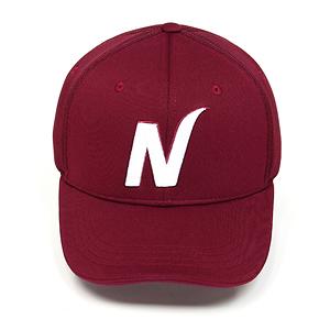 일반형 모자