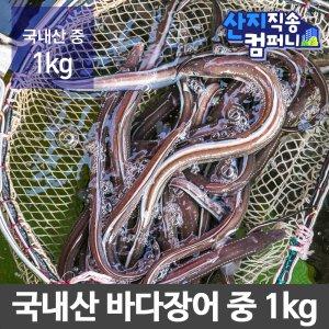 [수산쿠폰20%] 산지직송 최고급 국내산 바다장어 중장어 1kg