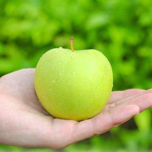 [농할쿠폰20%] 사과중 최고의여왕 썸머킹 사과 소과 1.5kg 실중량