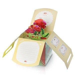 아이스크림 팝업 카네이션 박스