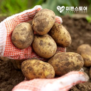 [농할쿠폰20%] 미쁜스토어 싱싱한 2020년 햇 감자 3kg 5kg 10kg 20kg