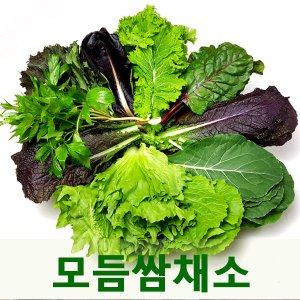 [농할쿠폰20%] 싱싱한 모듬쌈채소2kg 7-9종채소모음 웰빙푸드