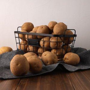 포슬포슬 국내산 감자 3kg/5kg/10kg