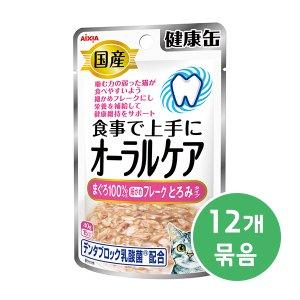 아이시아 건강캔파우치 오랄케어 걸쭉한 참치후레이크 40g x 12개