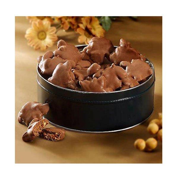 sm / Turtles Chocolate Tin Tortoise Chocolate 23oz AL Schutzman